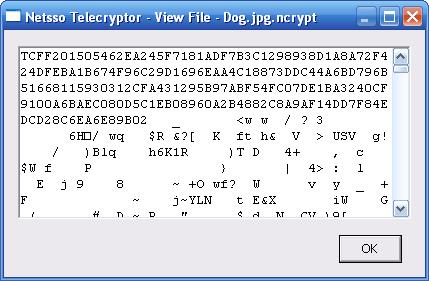 Telecryptor-View File